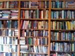 bookshelf-hill